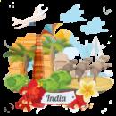 india (2) (1)